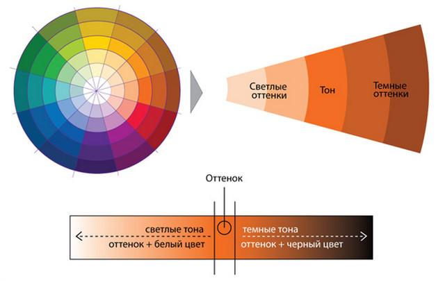 В цветовом круге ниже каждый