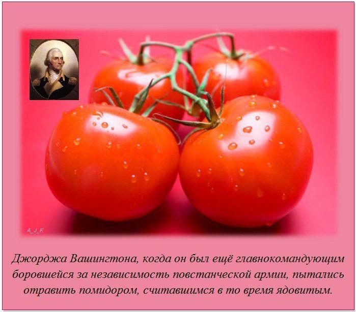 http://img0.liveinternet.ru/images/attach/c/11/115/285/115285154_4.jpg