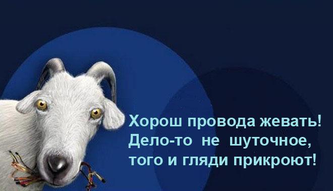 3115386_103292164_4309103_JJ_i_shytka (660x378, 54Kb)