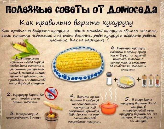 crop_97030173_1jptjM (684x538, 394Kb)