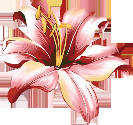 Клипарт розы на прозрачном фоне ...: pictures11.ru/klipart-rozy-na-prozrachnom-fone.html