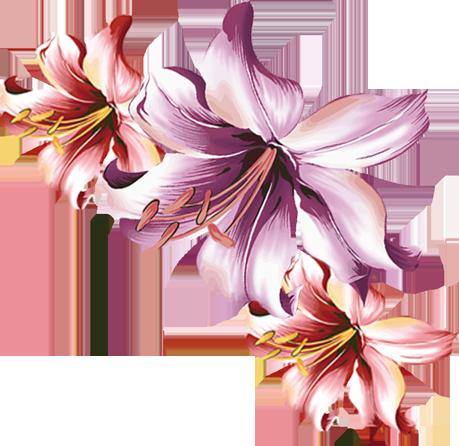 рисованные цветы - Самое интересное в блогах