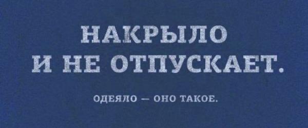 smeshnie_kartinki_140624665413 (600x250, 69Kb)