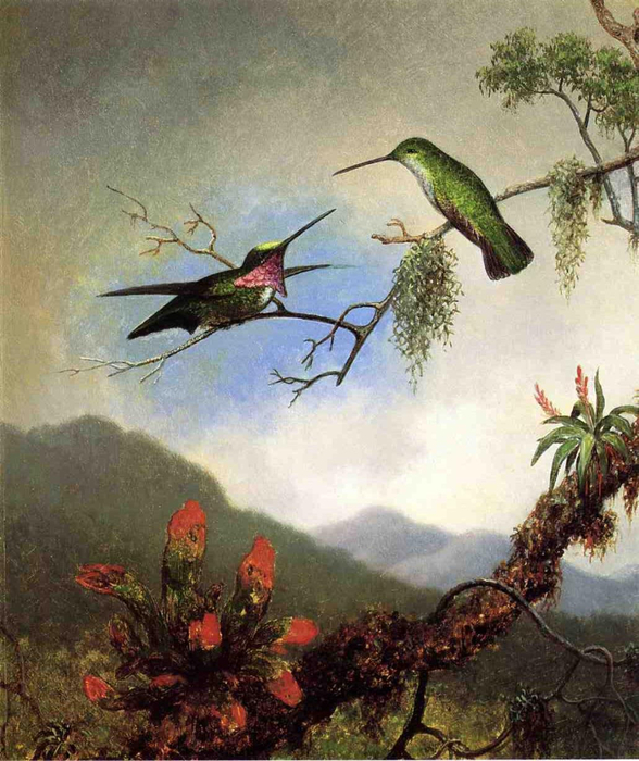 Martin-Johnson-Heade-xx-Amethyst-Hummingbirds-xx-Private-Collection (588x700, 434Kb)