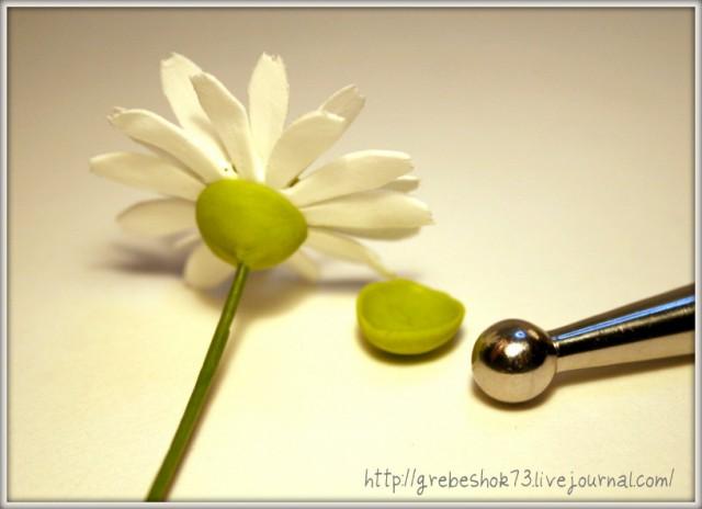 Полимерная глина Лепим цветки клевера и ромашки