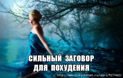 5177462_rjwQeXUia_k (470x300, 90Kb)