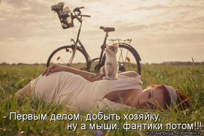 kotomatritsa_3_ (700x466, 290Kb)