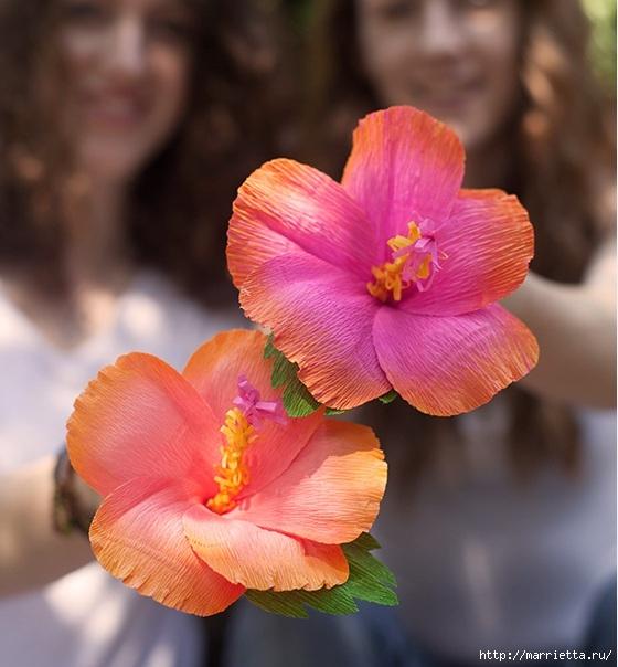 Цветы из гофрированной бумаги. ГИБИСКУС (1) (560x604, 183Kb)
