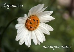 3768849_nastroenie_hor_1_ (300x211, 18Kb)
