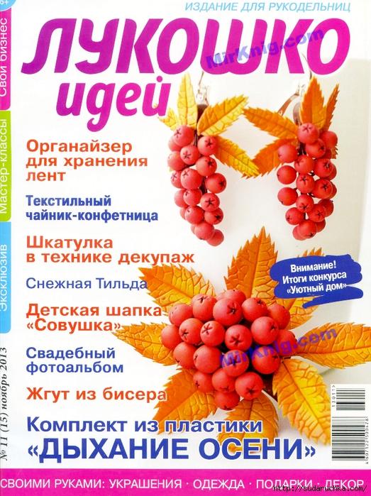 MirKnig.com_Лукошко идей №11 2013_Страница_01 (523x700, 377Kb)