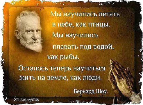 5053532_Bernard_Shoy (492x362, 377Kb)