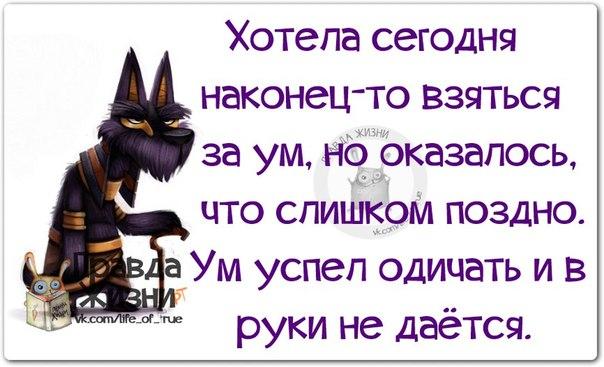 1407438156_frazki-7 (604x367, 208Kb)