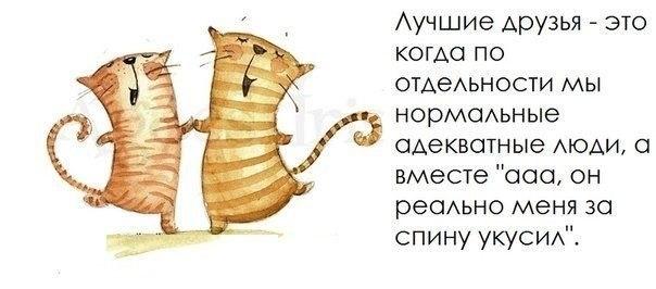 109796034_large_1370884635_frazochki30 (604x266, 82Kb)