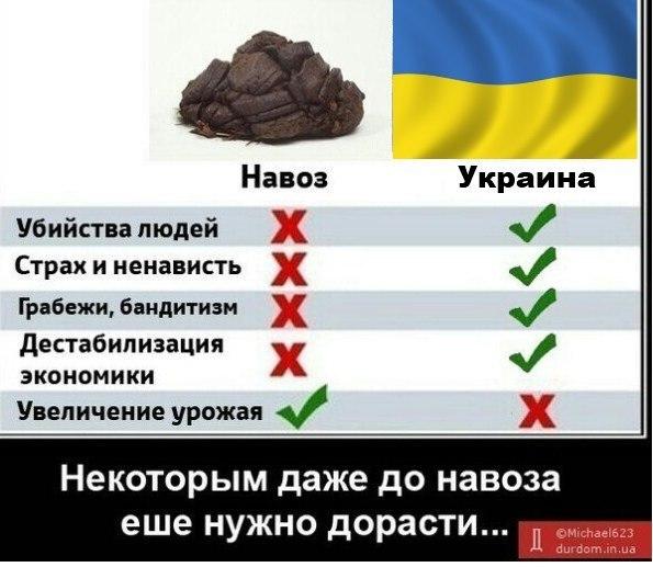 http://img0.liveinternet.ru/images/attach/c/11/115/546/115546834_Eogt4214B9E.jpg