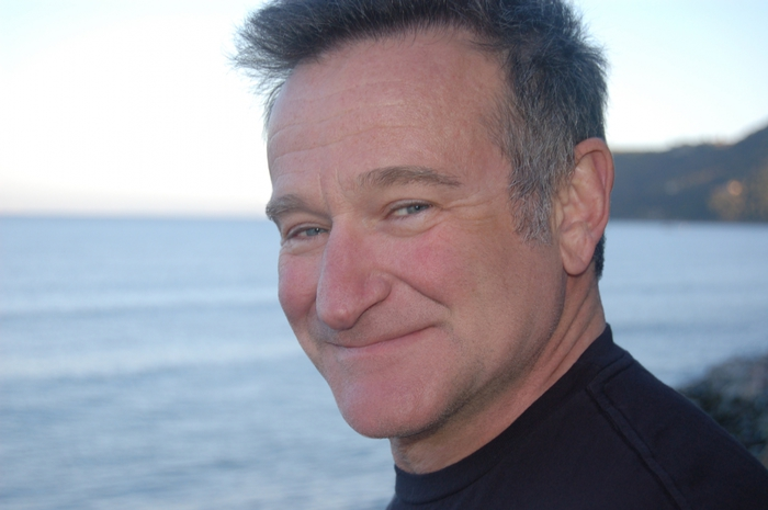 3455057_robinwilliams1 (700x465, 165Kb)