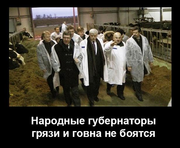 Полтавченко5 (616x507, 111Kb)