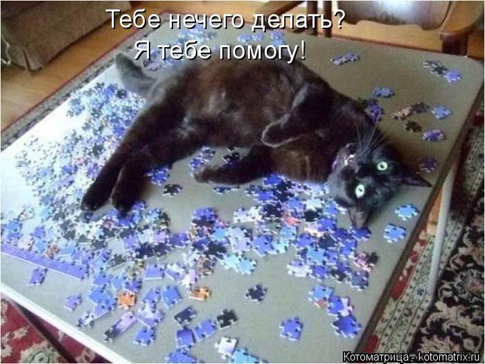 kotomatritsa_Nn (700x525, 382Kb)
