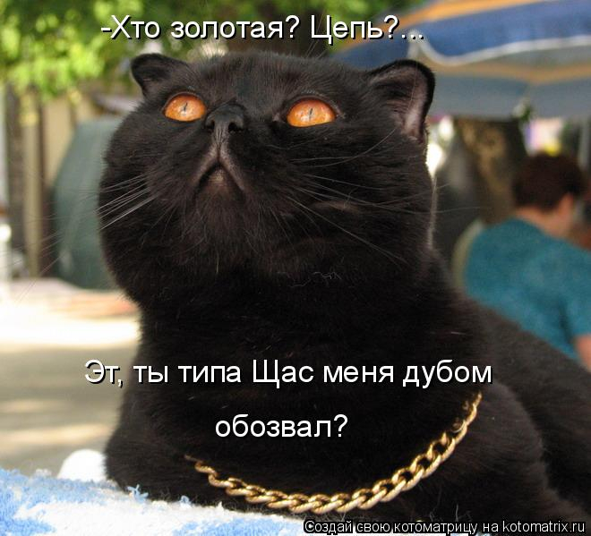 kotomatritsa_u (1) (660x599, 255Kb)
