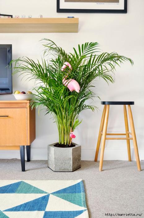 Для большого комнатного растения - шестигранное кашпо из бетона (46) (465x700, 256Kb)