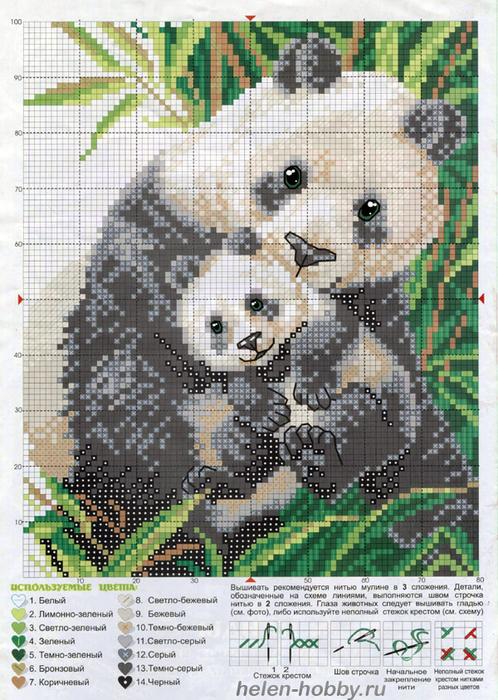 vyshivka-panda-shema (498x700, 481Kb)