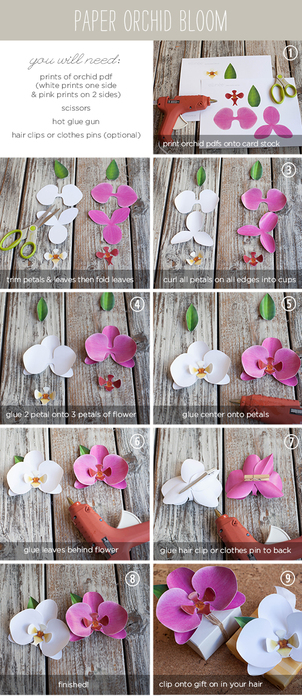 PaperOrchidTutorial (302x700, 282Kb)