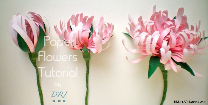 Paper Flowers Tutorial  DRI (700x353, 130Kb)