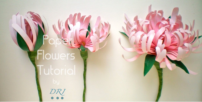 Paper Flowers Tutorial  DRI (700x353, 239Kb)