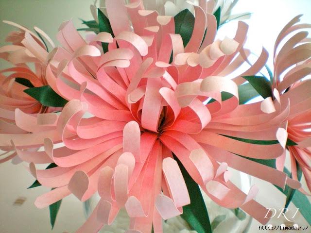 Flores de Papel 1 DRI (640x480, 213Kb)