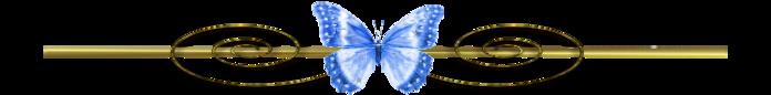 3779070_0_ffec0_c23198e3_XXXL (700x86, 48Kb)