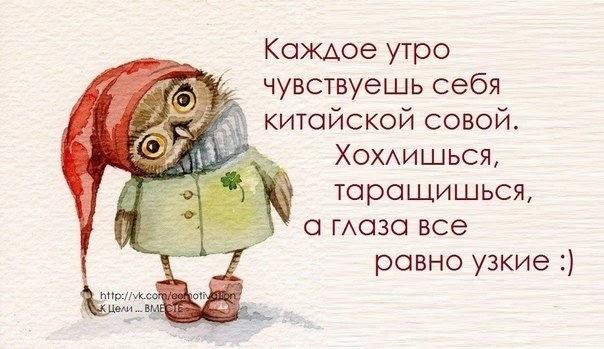 http://img0.liveinternet.ru/images/attach/c/11/115/745/115745708_large_8.jpg