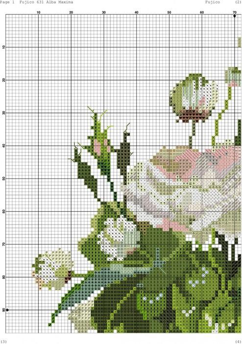 белые розы2 (494x700, 144Kb)