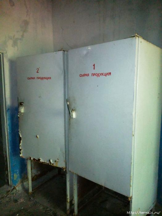 холодильник времен СССР/4555640_DSC_0792 (525x700, 250Kb)