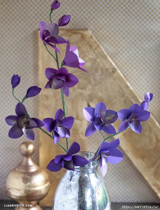 Цветы ОРХИДЕИ из цветной бумаги. Шаблоны (3) (533x700, 264Kb)