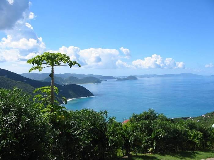 Tortola_01 (700x525, 50Kb)