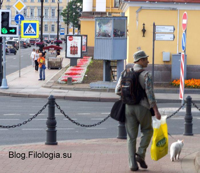 Кот на прогулке. Дворцовый мост в Петербурге/3241858_pet06 (700x607, 74Kb)