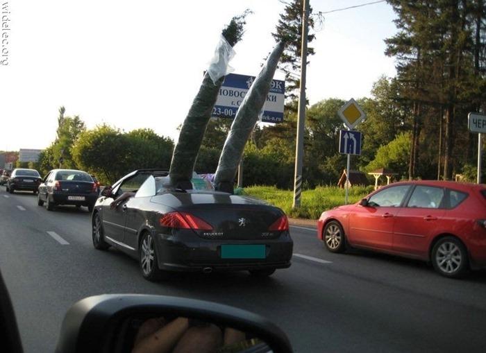 auto (104)