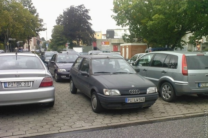 auto (131)