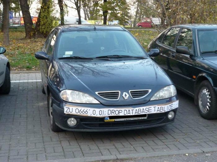 auto (224)