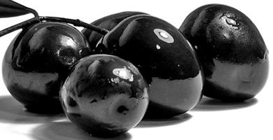 оливки (390x200, 43Kb)
