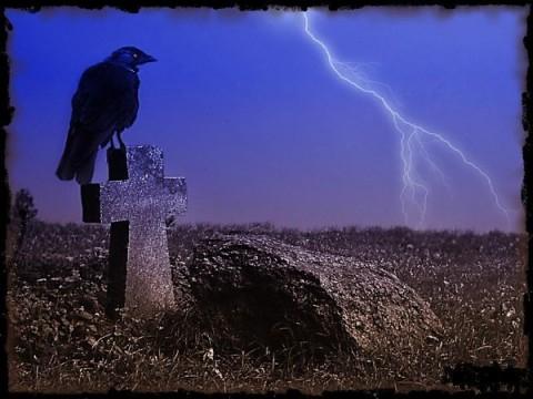 ПЛАКАТ - ворон на могиле (480x360, 144Kb)