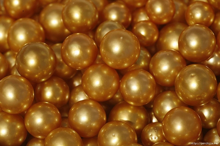 4979645_115016471_large_golden_pearls29 (700x465, 223Kb)