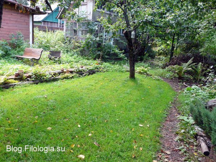 Зеленая лужайка на садом участке/3241858_sad04 (700x525, 127Kb)