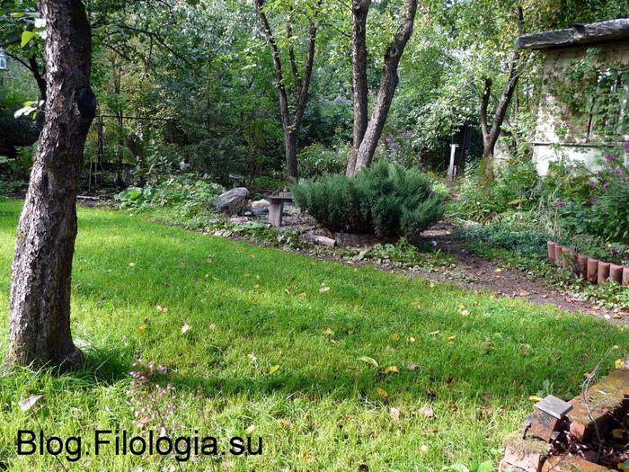 Газонная трава на садовом участке/3241858_sad06 (700x525, 139Kb)