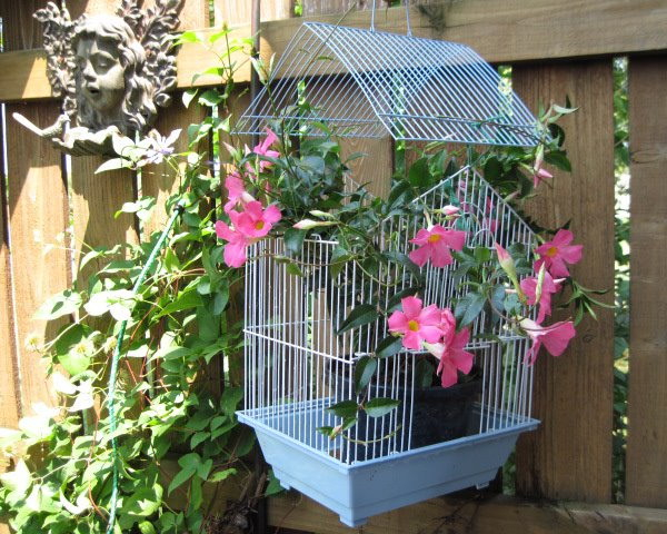 flowers-in-bird-cages-ideas1-2-3 (600x480, 345Kb)