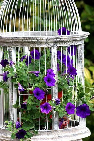 flowers-in-bird-cages-ideas1-2-5 (400x600, 299Kb)