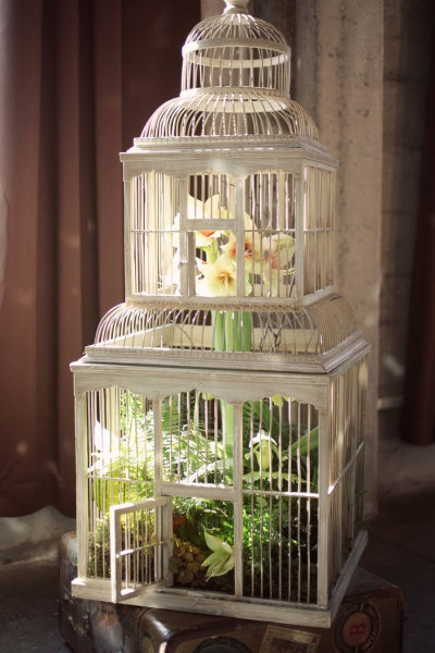flowers-in-bird-cages-ideas2-2-6 (400x600, 196Kb)