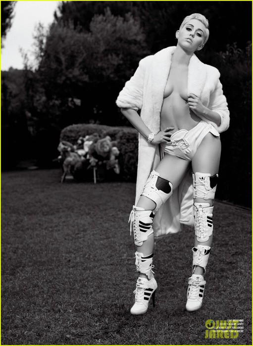 miley-cyrus-poses-totally-naked-for-v-magazine-05 (511x700, 96Kb)