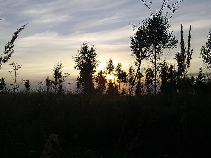 Закат 31.08.2014/1415502_31082014097 (700x525, 122Kb)
