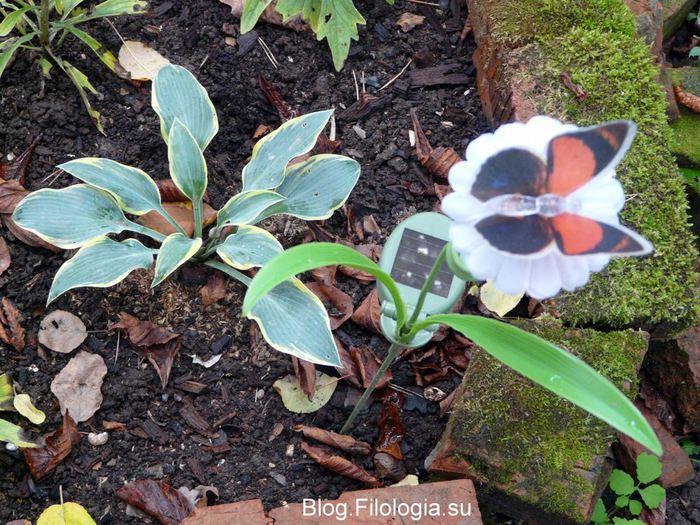 Садовый светильник в форме бабочки на солнечных батареях