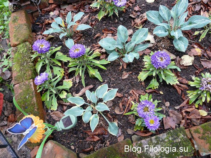 Игрушечная светящаяся бабочка для сада